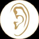 LkA_Audio